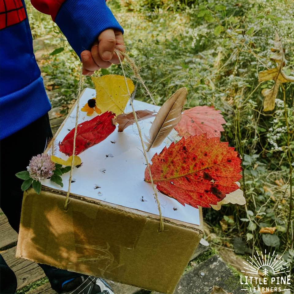 Try this fun fine motor activity for kids! This is perfect to try on a beautiful fall day, but will work for anytime of year. You can bring this on your next nature walk or use it to display nature finds in your home! Children will love rearranging their nature collection and adding new pieces as the year progresses.