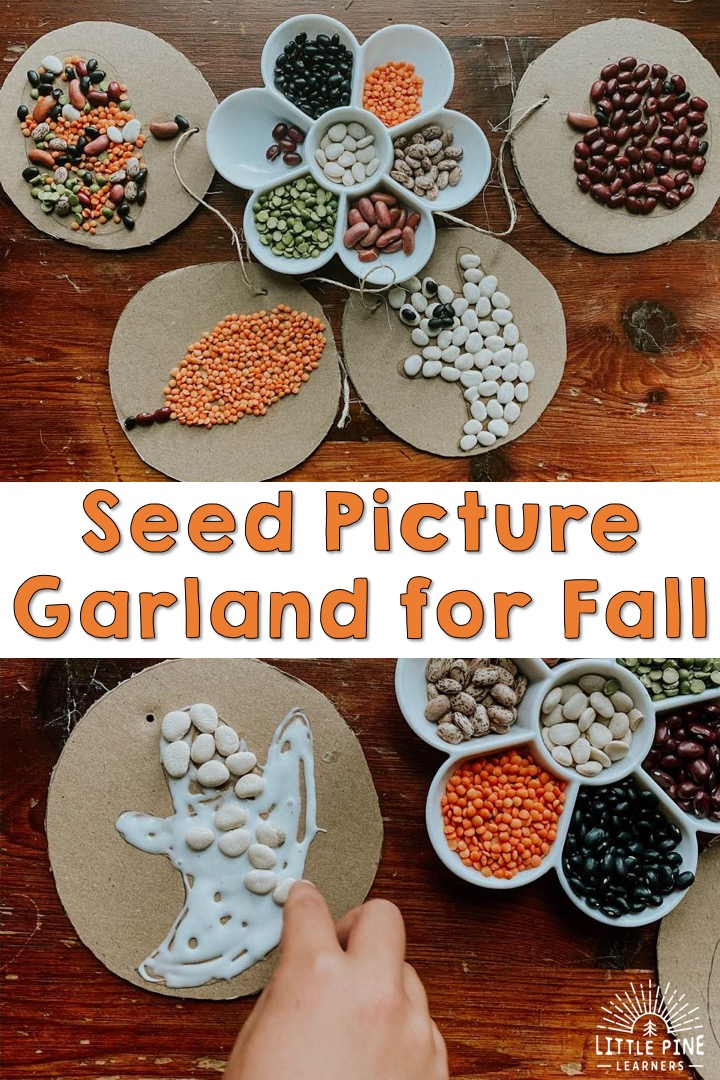Seed mosaics for kids!