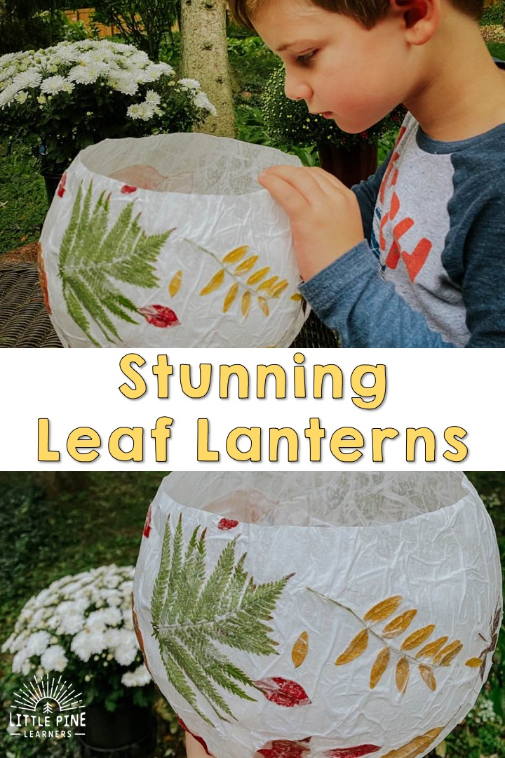 These stunning leaf lanterns will bring light into your home during the darker days of fall. It's the perfect activity to try with your children on a beautiful fall day! It also make a great fall equinox craft. Children will love going on a leaf hunt for this lantern and will enjoy the process of making this gorgeous fall decoration!