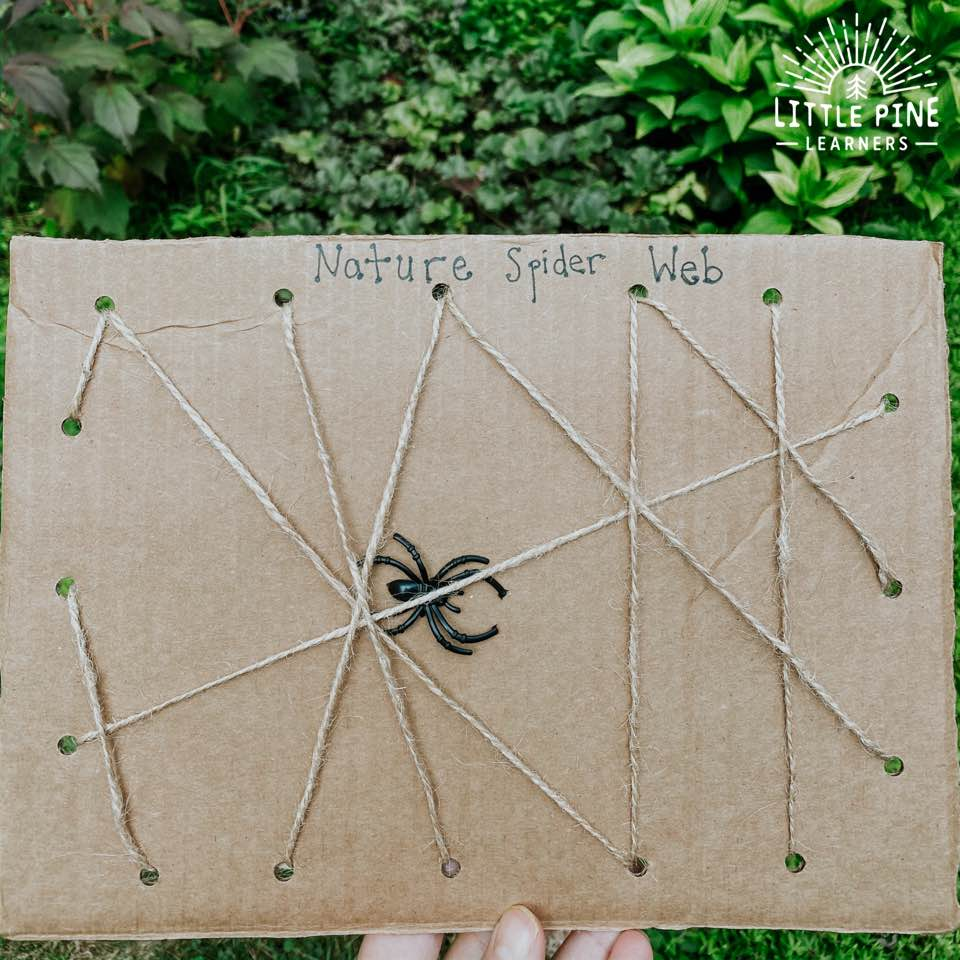 This spider web activity for kids is a must-try craft for fall! The nature spider web is so much fun to make and you can reuse the board over and over again. It's also an excellent way to develop fine motor skills!
