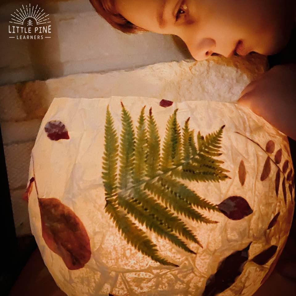 Stunning leaf lantern!