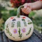 Have you ever decorated pumpkins with pieces of nature? It's so simple and looks beautiful when complete! You can use leaves, flowers, or other light pieces of nature. Kids will love pressing the pieces of nature and gluing them onto the pumpkin!