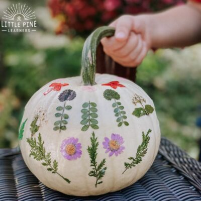 How to Decorate Pumpkins with Pieces of Nature