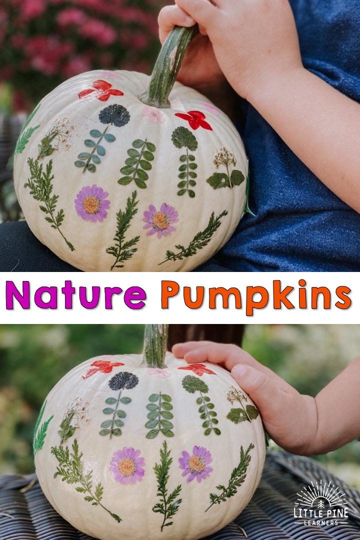 Pretty pumpkin with pressed pieces of nature