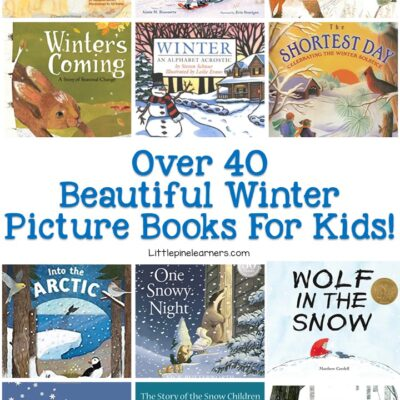 40+ Winter Picture Books for Kids