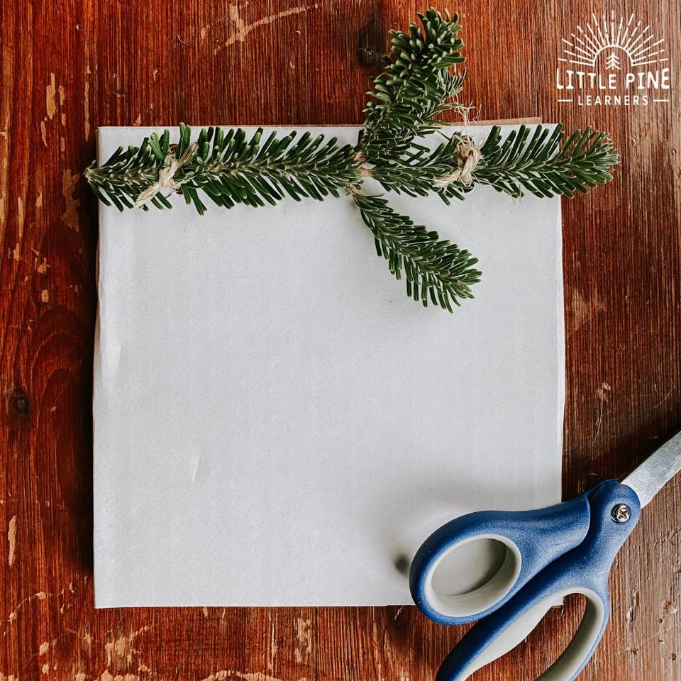 Pretty pine branch Christmas cards.