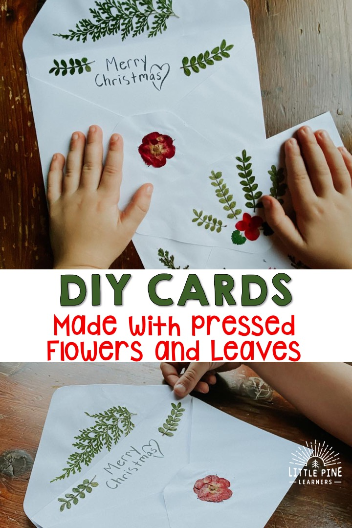 These pressed nature cards and envelopes are perfect for the holidays, but they can be made for any occasion! They make beautiful birthday, Easter, Mother's Day, and thank you cards as well!