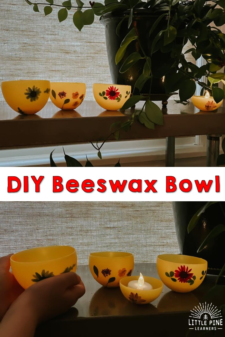 These DIY bowls made of beeswax are so fun to make and look gorgeous when complete!