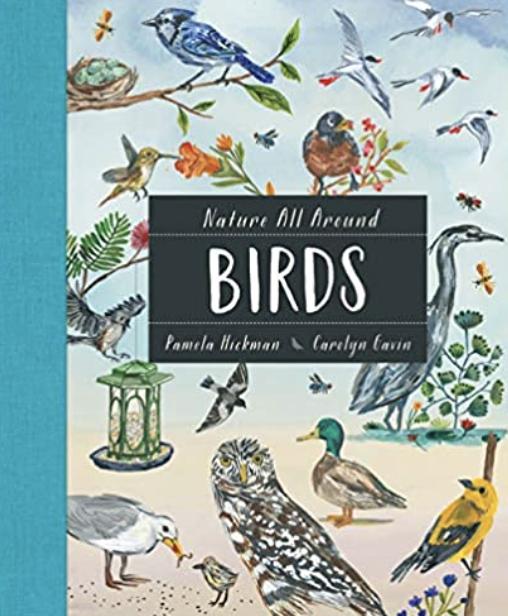 Bird guide for children