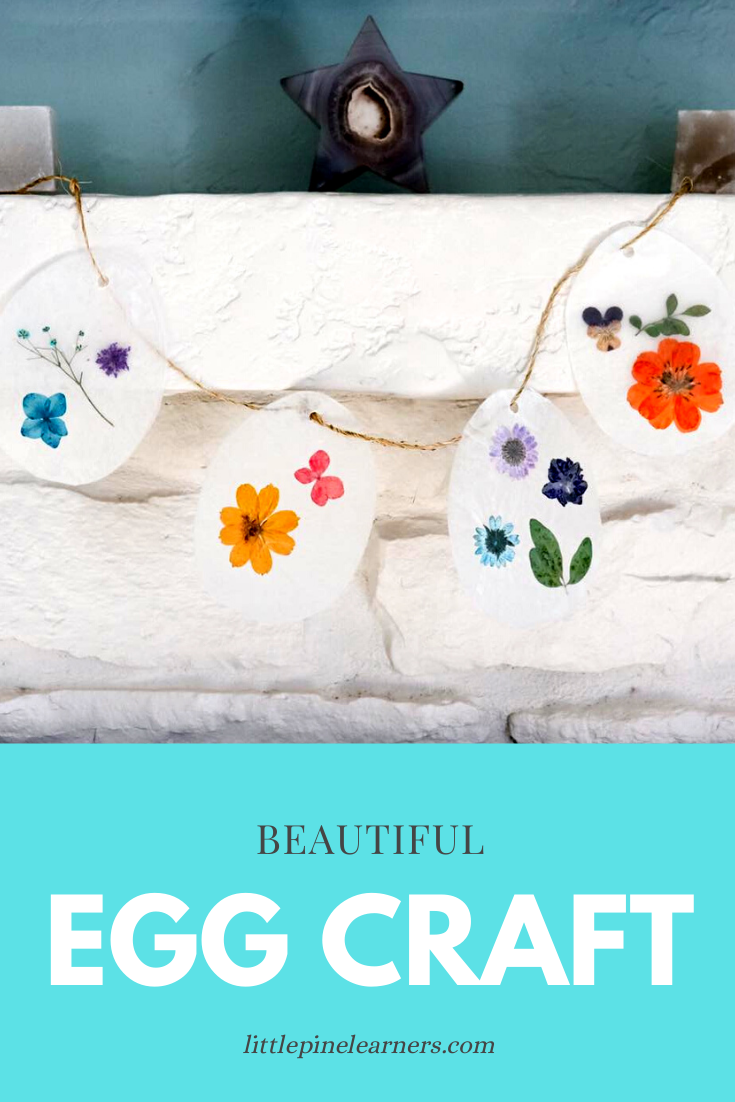 Beautiful Egg Craft 1
