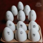 Fun Ways to Use Egg Stamps!