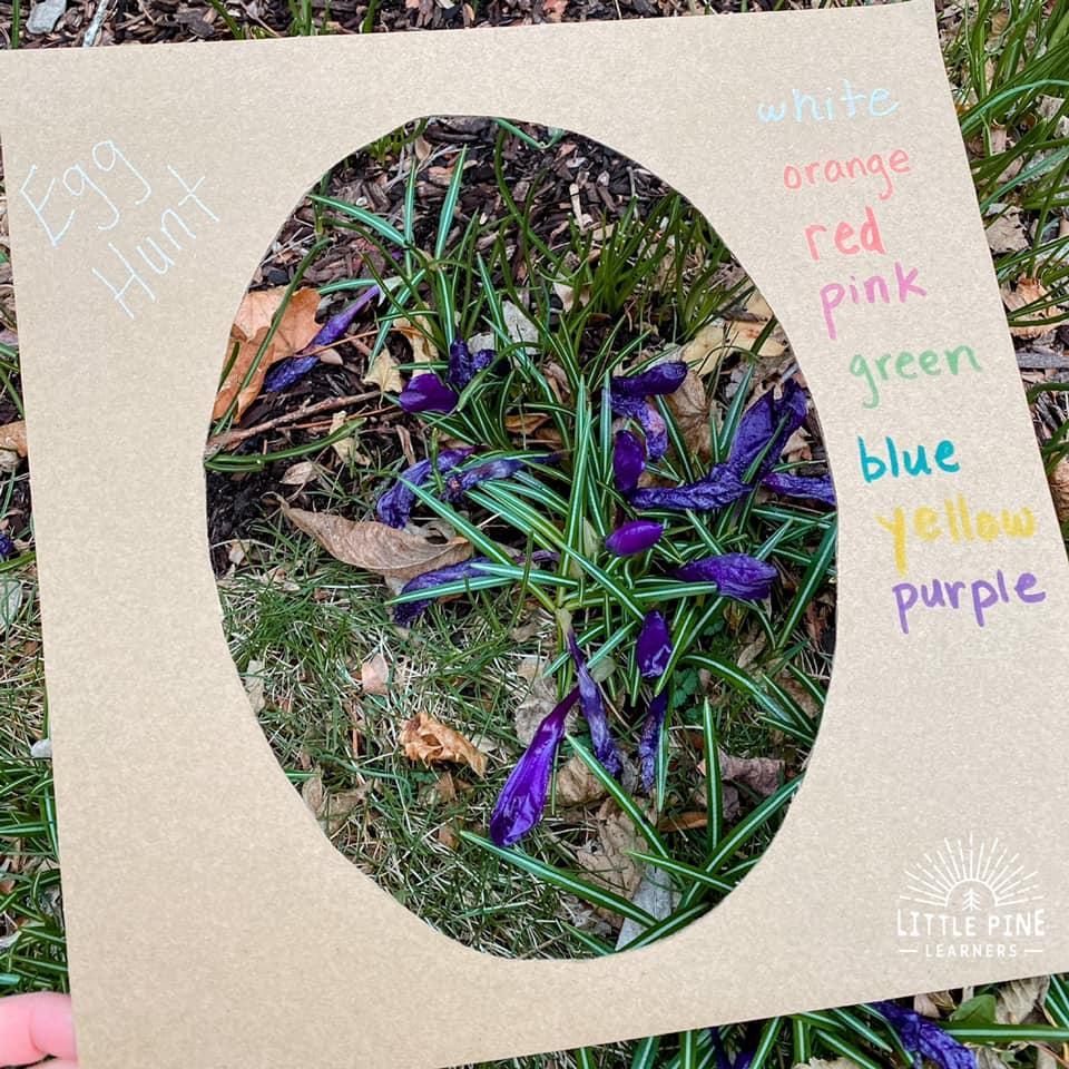 Cardboard egg craft for kids!