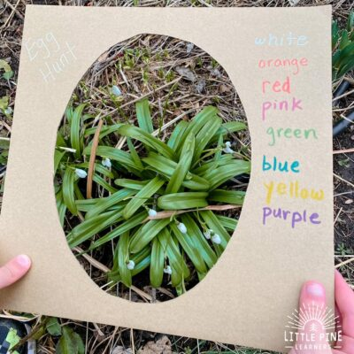 Easy Spring Nature Walk Activity for Kids