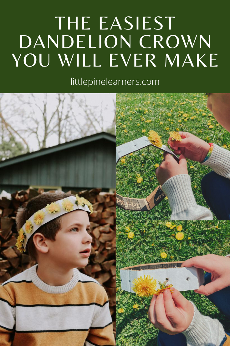 This is the EASIET dandelion crown you will ever make! Kids of all ages will enjoy this simple nature craft and the cardboard crown can be saved for endless wildflower crowns in summer.