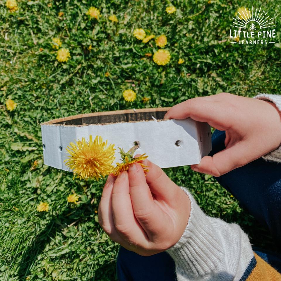 This is the EASIET dandelion crown you will ever make! Kids of all ages will enjoy this simple nature craft and the cardboard crowns can be saved for endless wildflower crowns in summer.