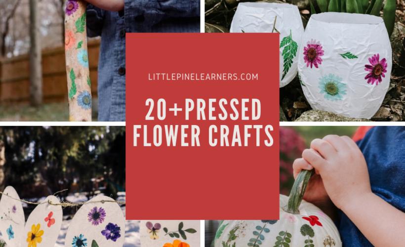 Stunning Pressed Flower Crafts