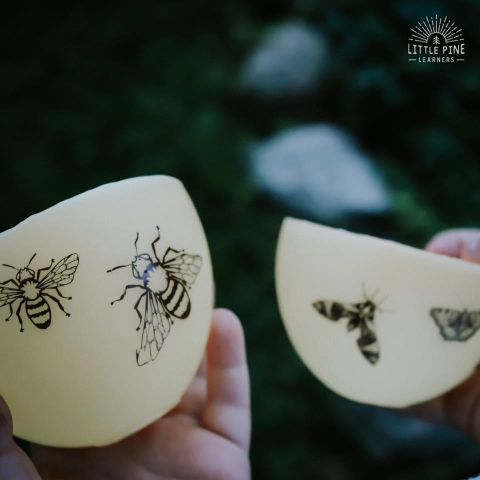 Gorgeous Beeswax Luminaries