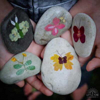 Flower Petal Art on Rocks